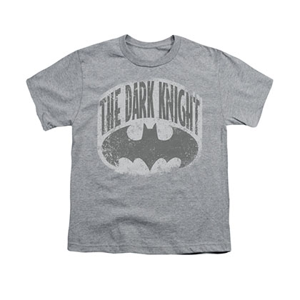 Batman The Dark Knight Shield Gray Youth Unisex T-Shirt