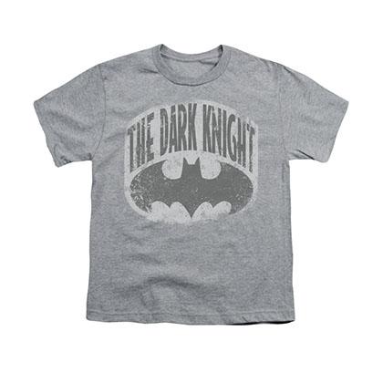 Batman The Dark Knight Shield Gray Youth Unisex T-Shirt