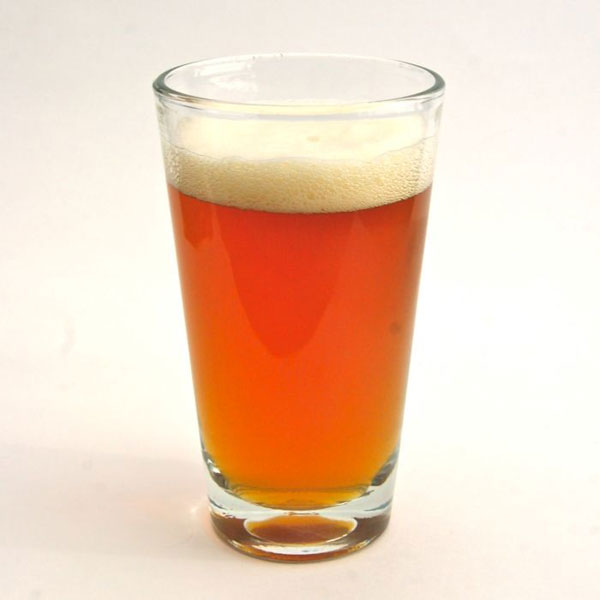 Craft A Brew American Pale Ale Instructions