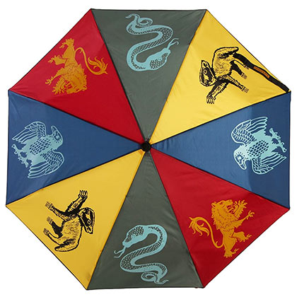 Harry Potter Wizard School Umbrella