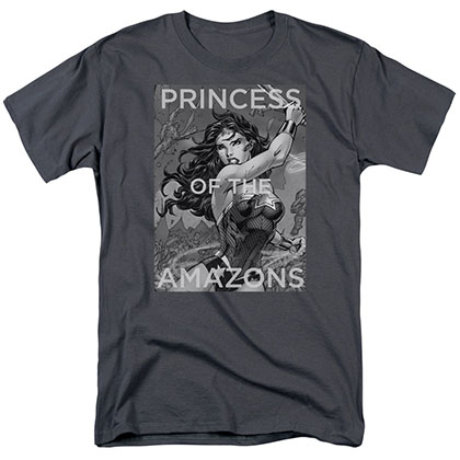 Wonder Woman Princess Of The Amazons Gray T-Shirt