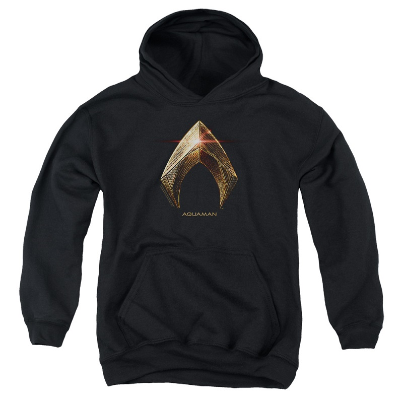 Justice League Aquaman Logo Youth Hoodie