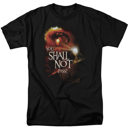 Lord Of The Rings You Shall Not Pass Tshirt