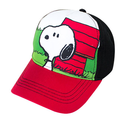 Snoopy Dog House Youth Size Hat