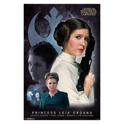 Star Wars Princess Leia Memory Poster