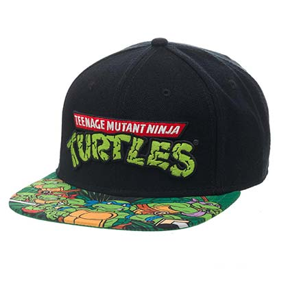 Teenage Mutant Ninja Turtles Flat Bill Classic Logo Hat