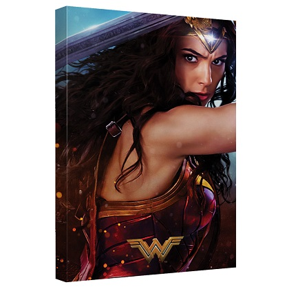 Wonder Woman Ready For Battle 16x20 Canvas Print