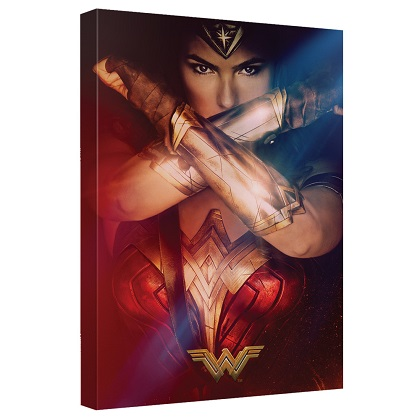 Wonder Woman Movie Poster 16x20 Canvas Print