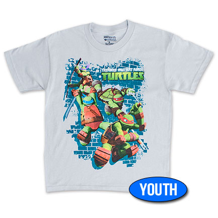 Teenage Mutant Ninja Turtles Jump Down Youth Boys 8-20 Tee Shirt - Gray